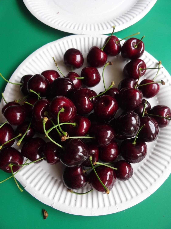 Kordia cherry fruit